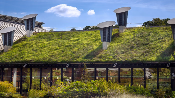 tetti verdi costi benefici