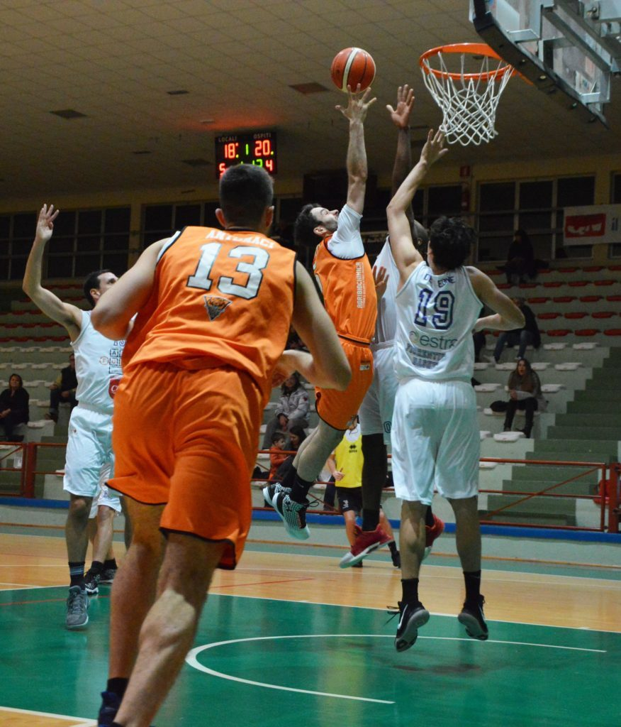 Tigers a Firenze, partono i Playoff!